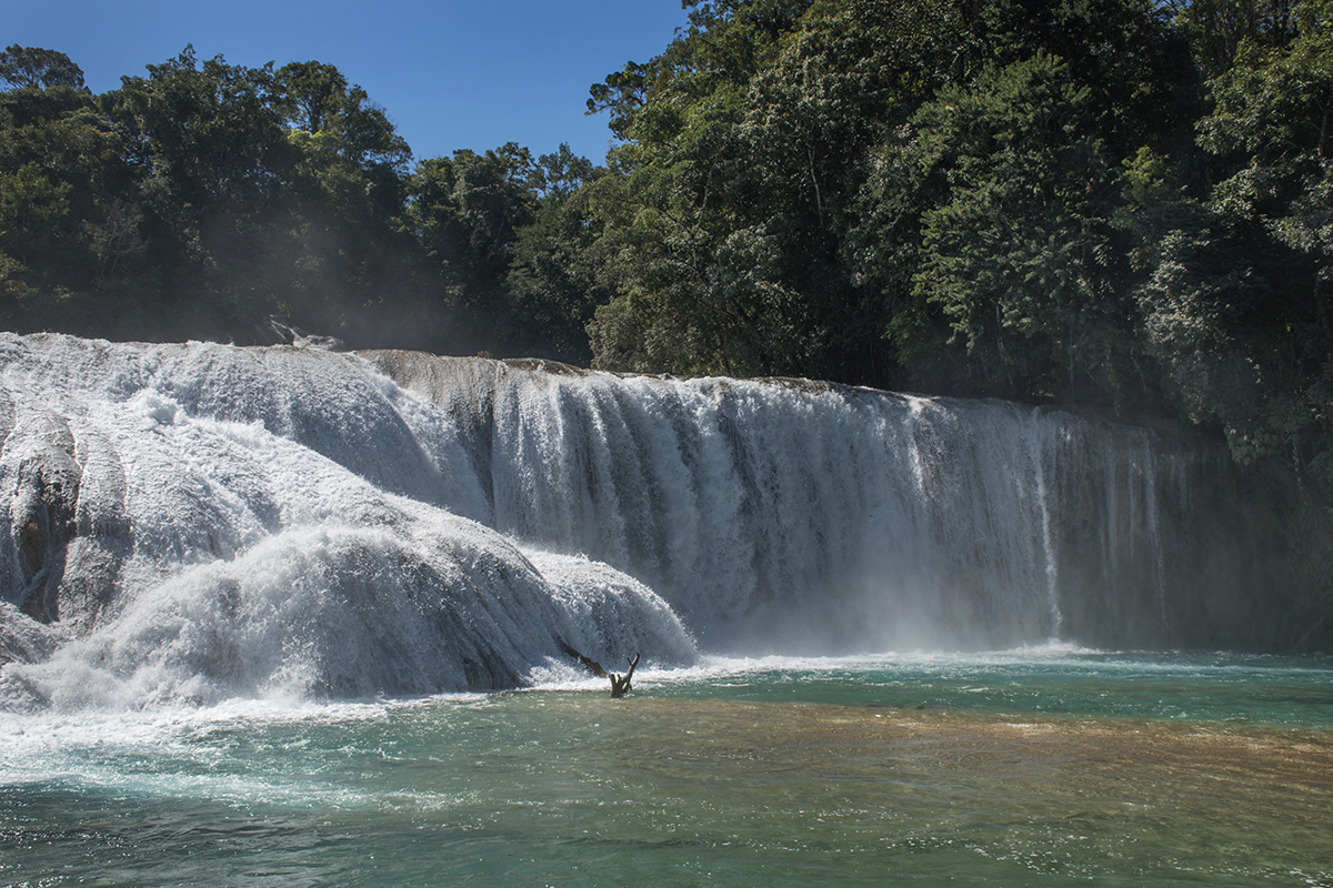 Agua Azul, one of the lower falls.