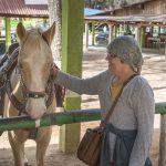 Day Trip to Las Grutas de Rancho Nuevo